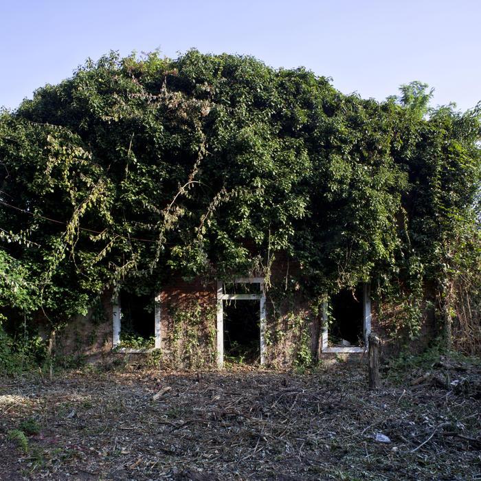 Isola della Certosa, 4