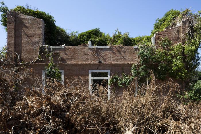 Isola della Certosa, 9