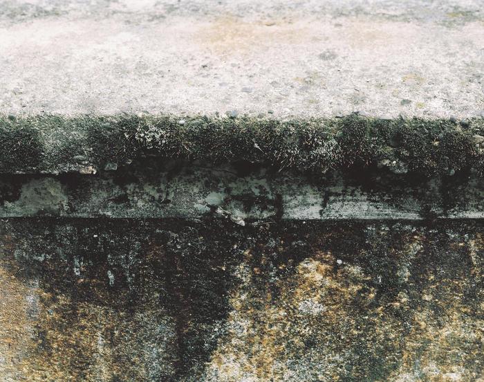 Lungo la Linea, 12